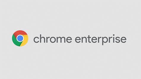 Logo of Chrome Enterprise. Colour wheel on the left and dark grey fonts on light grey background.