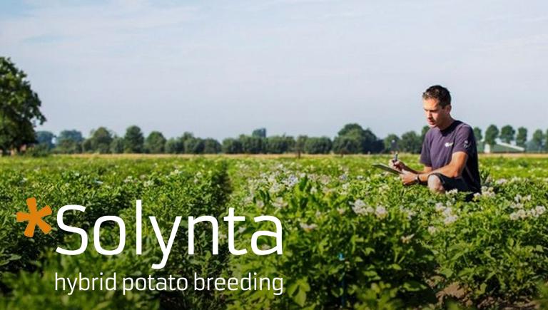 Solynta Cloud Innovation & Devops